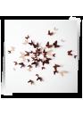 "Декор для стен ""Бабочки HIT Капучино"" картон 50 шт"