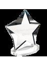 Звезда оргстекло с серебром (арт.Nag3)